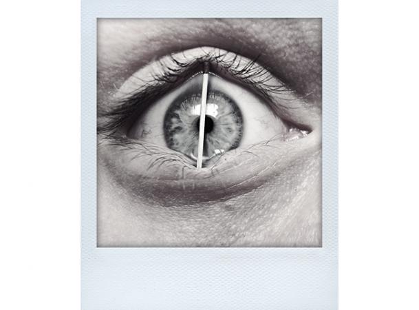 Fokus Aufmerksamkeit © Frank Dunker